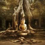 Wake Up!  Understanding Enlightenment in Buddhism