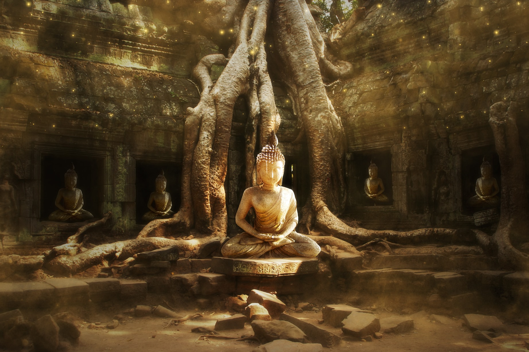 a summary of buddhism and its view on enlightenment Yet the philosophical character of korean buddhism, and its stance in regard to   aware of the svabhaava-taste of this description (the enlightened mind is.